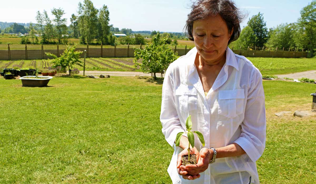 Hazelmere Organic Farm